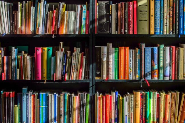 A stock image of a book shelf. Picture: Pixabay