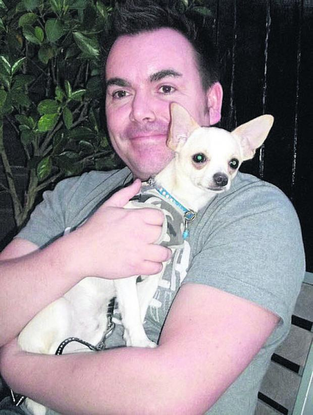 Chico the chihuahua, pictured with Darren Peck