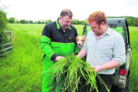 Alan Smith, left, and his son Richard assess the grass in one of their fields at Kingham Hill Farm with their dog Pip