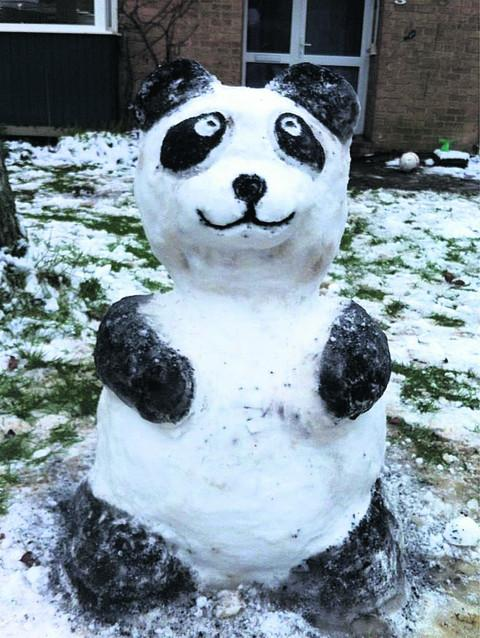 Our winner the Snow Panda by Jade Laforest
