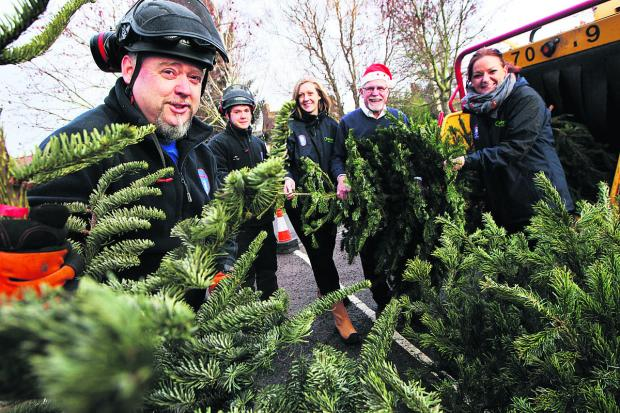 Witney Gazette: From left, city council staff Tim Wyatt, Luke Rowland, Emily Martin and Maria Warner with, second from right Cllr John Tanner at Hinksey Park, one of the places around Oxford where Christmas trees can be recycled