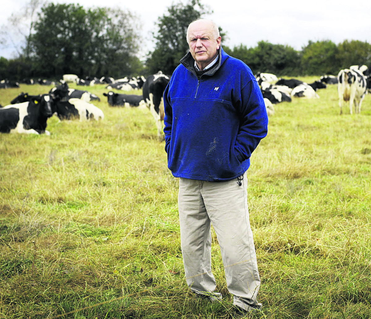 WORRIED: John Malins with some of his cows at Hawkwell Farm, in Bicester