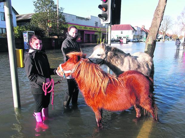 Witney Gazette: Abbie Kerry, left, and Louise Gibson move ponies Stumpy and Baz to higher ground