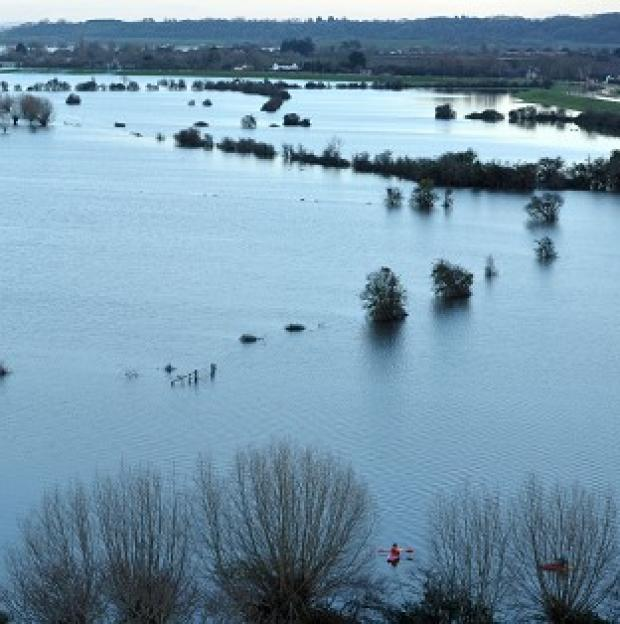 Witney Gazette: Flood water on the Somerset Levels
