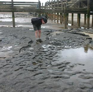 Witney Gazette: Some of the oldest human footprints in the world, thought to be more than 800,000 years old, found in silt on the beach at Happisburgh on the Norfolk coast (British Museum/PA)