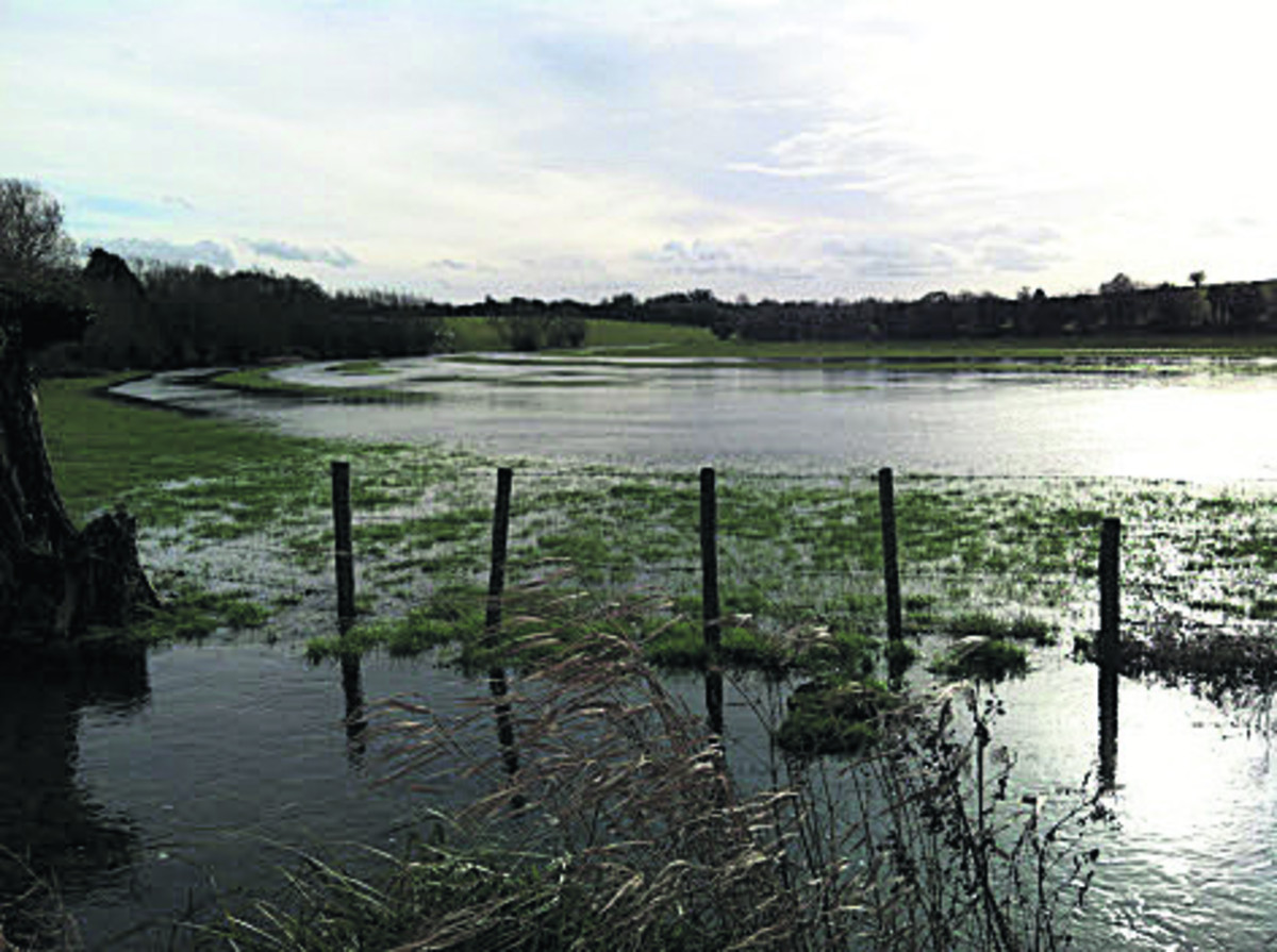 Flooding along the Shill Brook valley
