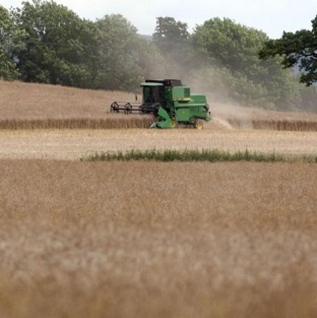 Witney Gazette: A report shows UK agriculture's contribution to the economy increased by 54% between 2007 and 2012