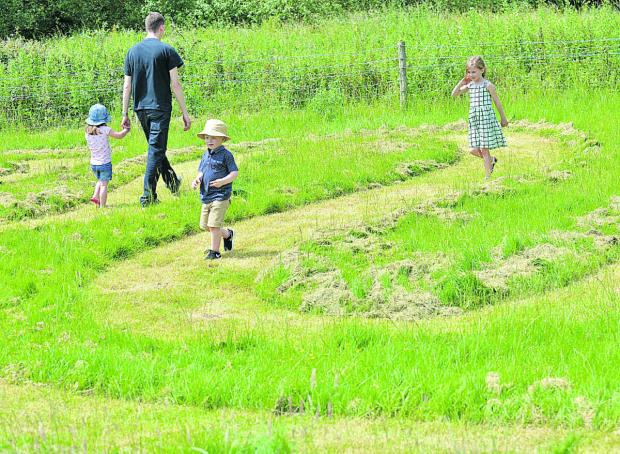 Dylan Mckinlay, four, leads the way through the maze, followed by his cousin Ella Taylor, six, and Matt Younger with three-year-old Phoebe Luke
