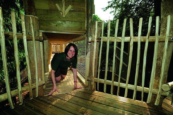 Demonstrating Cotswold Wildlife Park's newly opened Skymaze adventure playground is deputy section head of primates and small mammals Hayley Rothwell