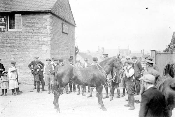 A war office purchasing party inspects a horse in Chipping Norton in 1914. Picture: Oxfordshire County Council, Oxfordshire History Centre