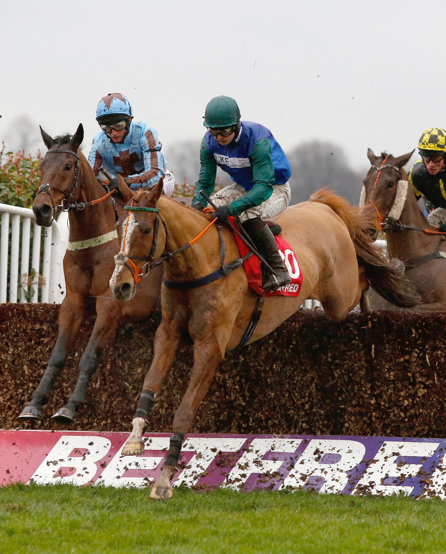 GUTSY SUCCESS: Ballydine and jockey Sean Bowen (green cap) on the way to a superb victory in the Betfred Mobile Masters Handicap Chase at Sandown on SaturdayPicture: Julian Herbert/PA Wire