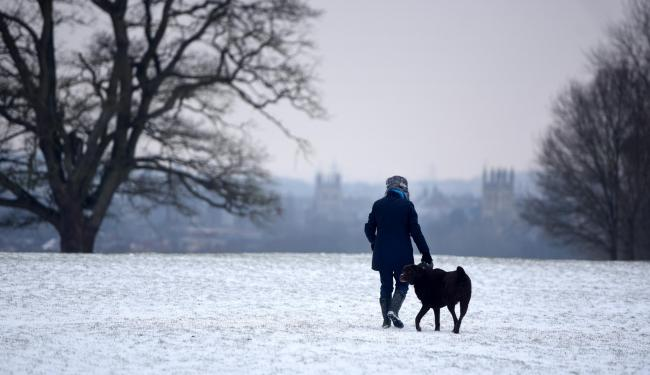 Snow in Oxfordshire - pictures. Richard Cave