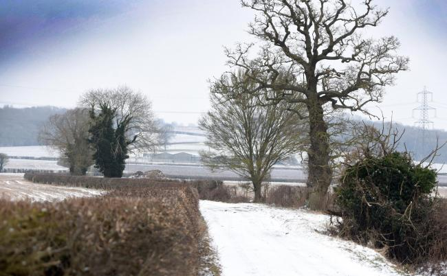 Snow in Oxfordshire - pics. Richard Cave