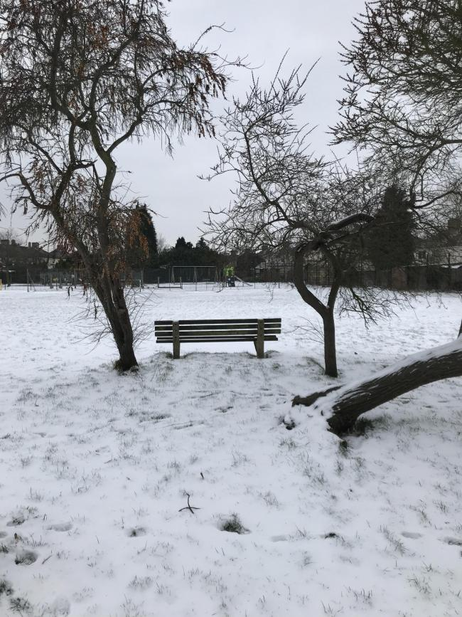 Snow angels and Gaisford Road Park