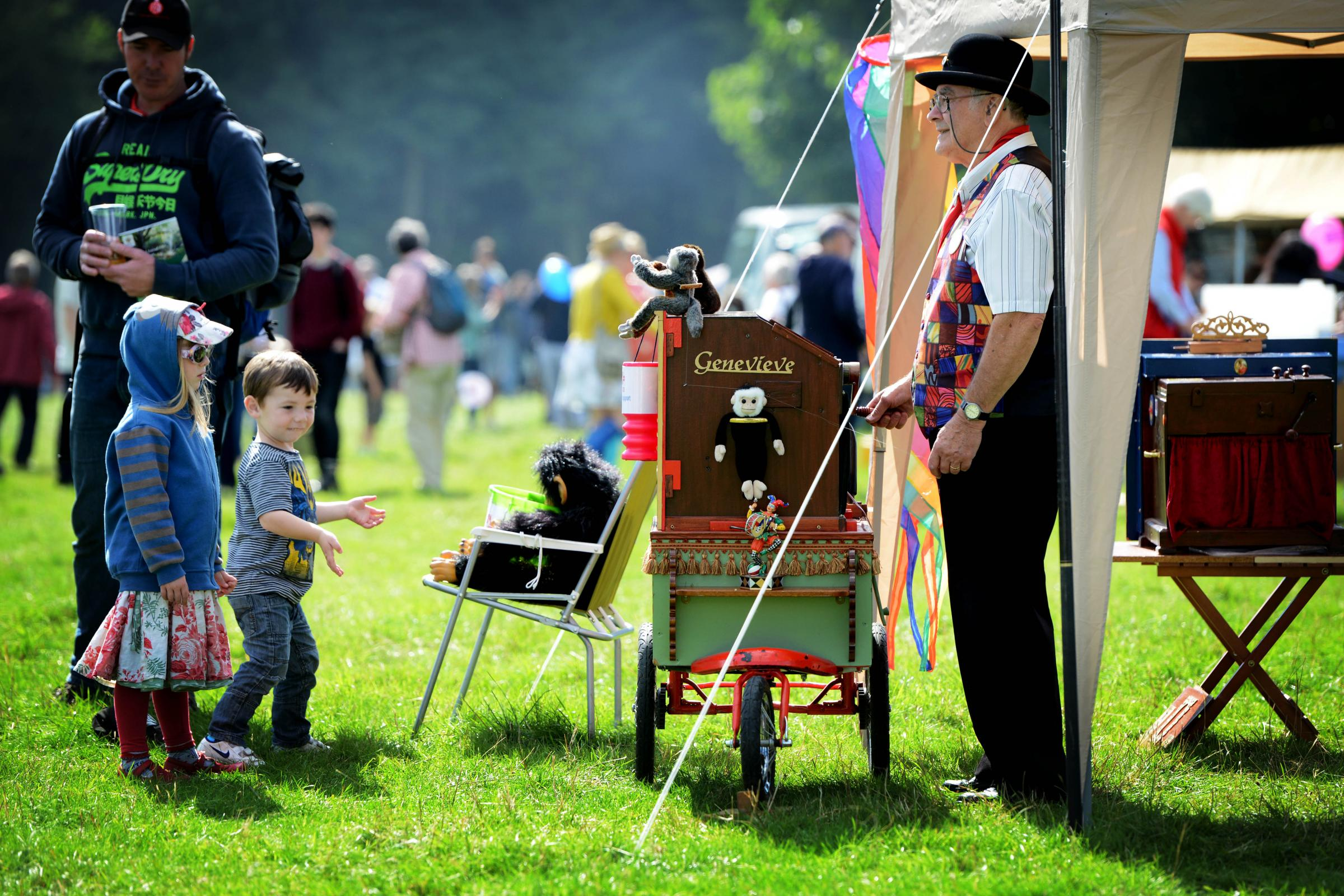 Wychwood Forest Fair 2015. Picture: Richard Cave