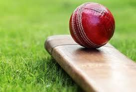CRICKET: Callum Taylor named Shipton captain